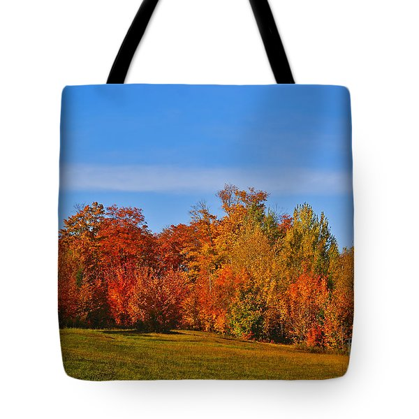 Canada In Colors Tote Bag by Aimelle
