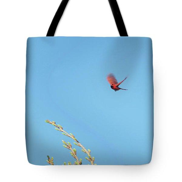 Cardinal In Full Flight Digital Art Tote Bag by Thomas Woolworth