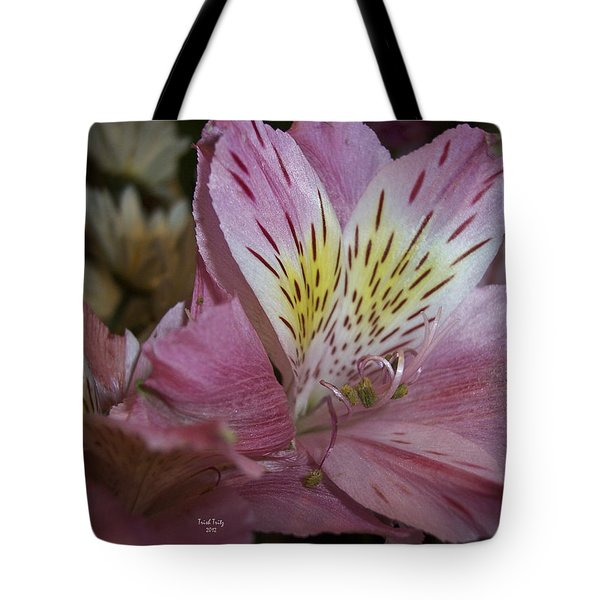 Carlee Mae Tote Bag by Trish Tritz