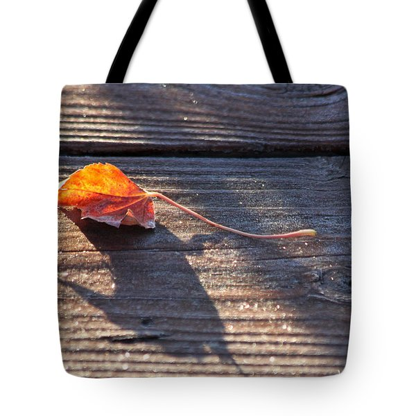 Catching The Light Tote Bag by Lauri Novak