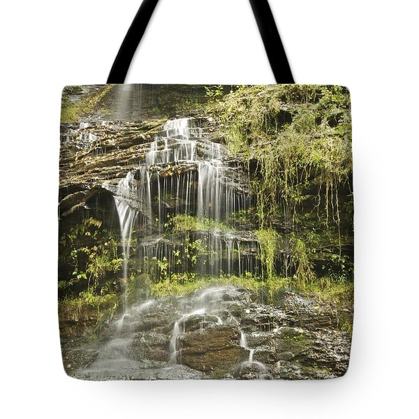 Cathedral Falls 3249 Tote Bag by Michael Peychich