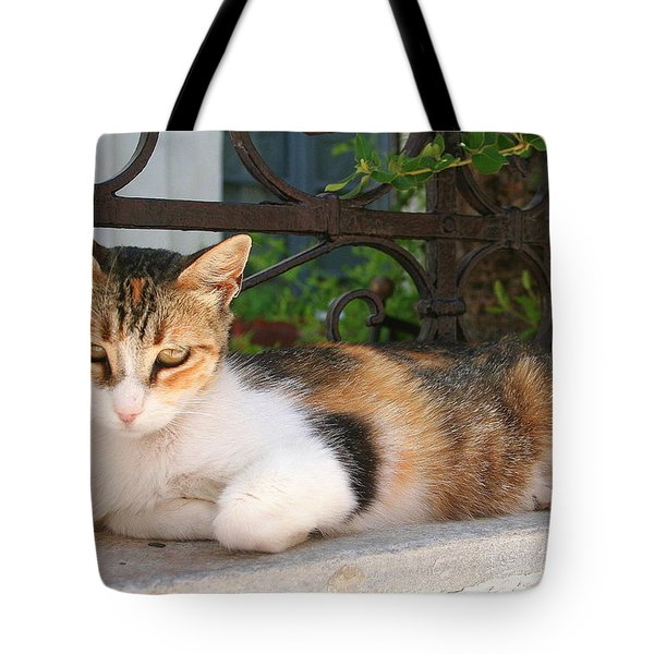 Cats Rule Even In Santorini Tote Bag by Laurel Talabere