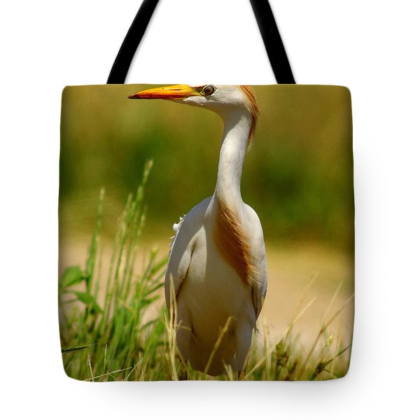 Cattle Egret With Closed Eyelid Tote Bag by Robert Frederick