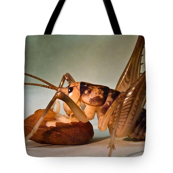 Cave Cricket Feeding On Almond Tote Bag by Douglas Barnett