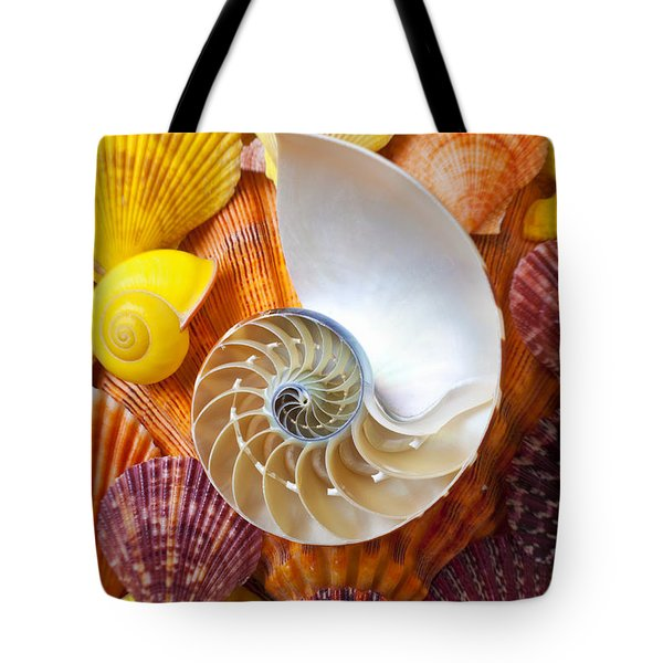 Chambered Nautilus  Tote Bag by Garry Gay