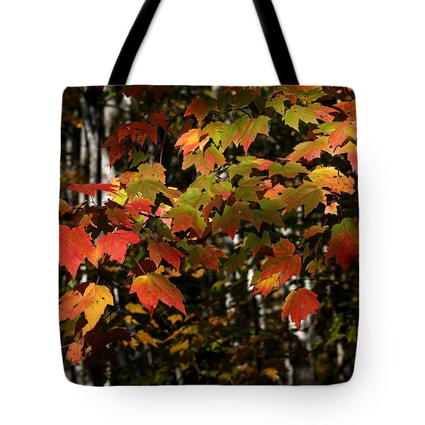 Changing Of The Colors Tote Bag by Rich Franco