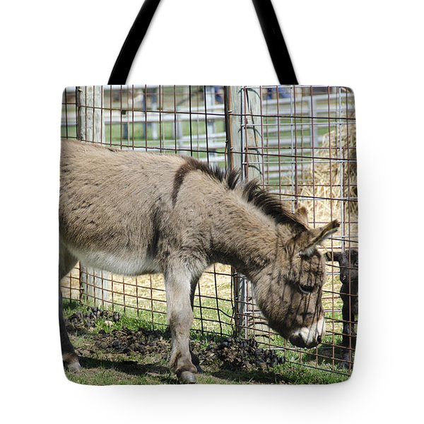 Checking Out The New Kids On The Block Tote Bag by LeeAnn McLaneGoetz McLaneGoetzStudioLLCcom