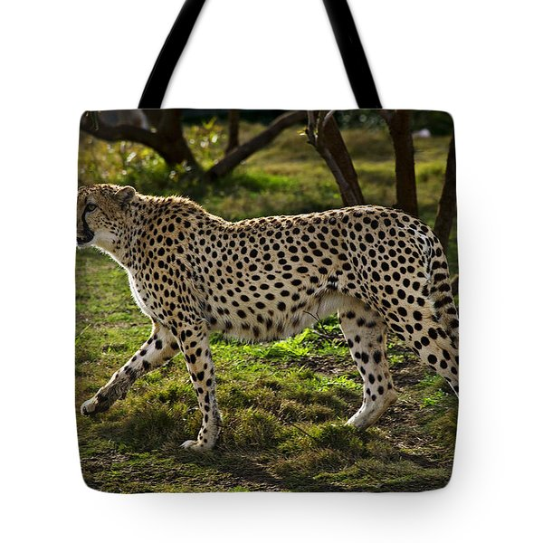 Cheetah  Tote Bag by Garry Gay