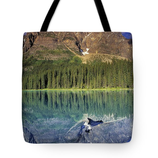 Chephren Lake And Mt. Chephren, Banff Tote Bag by Darwin Wiggett