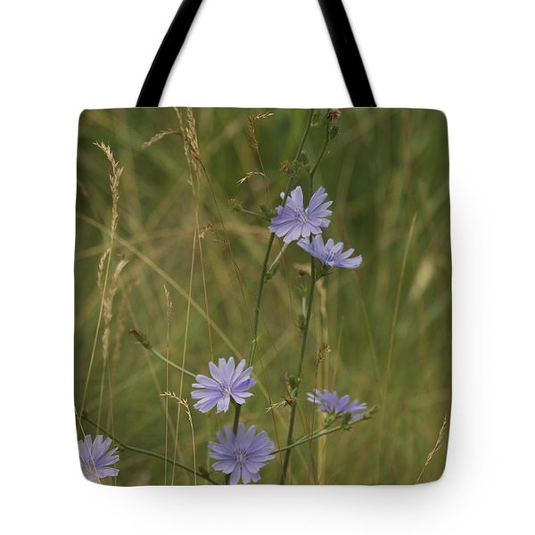 chicory 2765 Tote Bag by Michael Peychich
