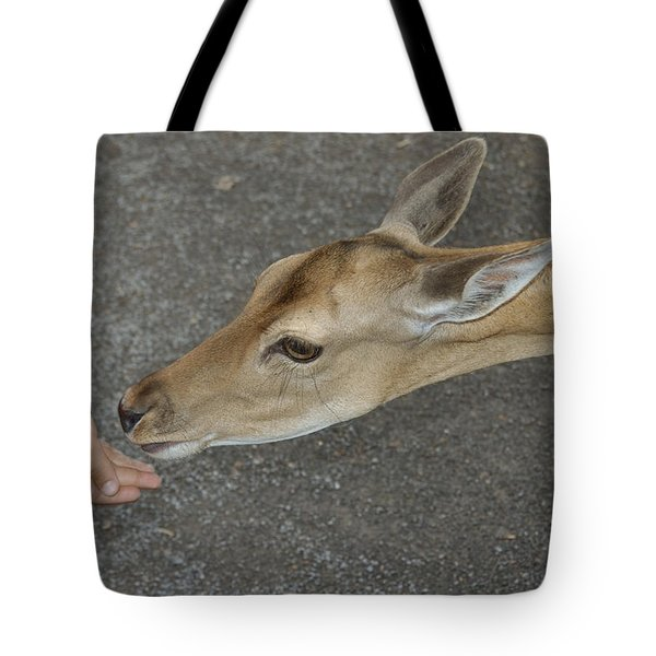 Child feeding deer Tote Bag by Matthias Hauser