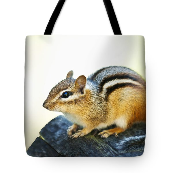 Chipmunk Tote Bag by Elena Elisseeva
