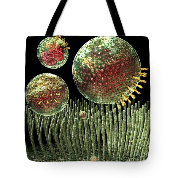 Chlamydia Tote Bag by Russell Kightley
