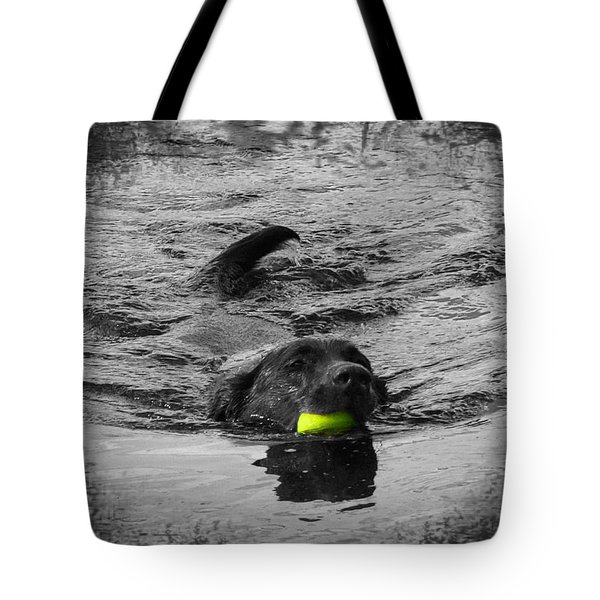 Chocolate Lab Tote Bag by Ms Judi