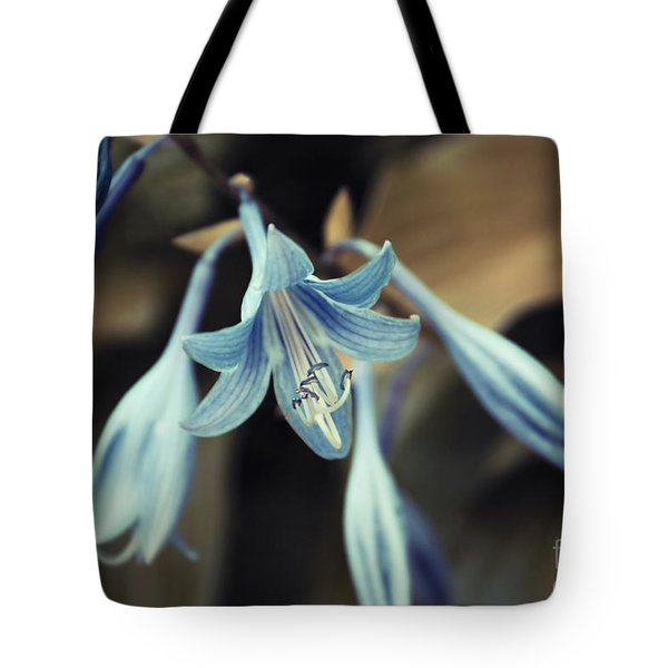 Cladis 22 Tote Bag by Variance Collections
