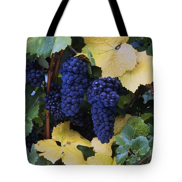 Close-up Of Ripe, Wine Grapes And Leaves Tote Bag by Natural Selection Craig Tuttle