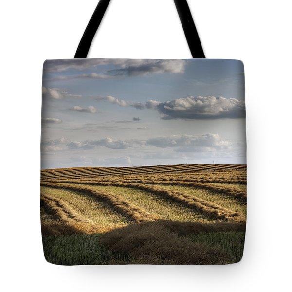 Clouds Over Canola Field On Farm Tote Bag by Dan Jurak