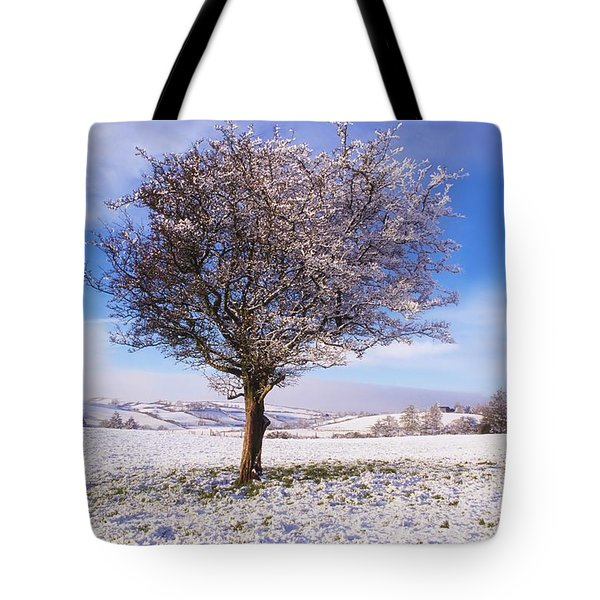 Co Antrim, Ireland Hawthorn Tree Known Tote Bag by The Irish Image Collection