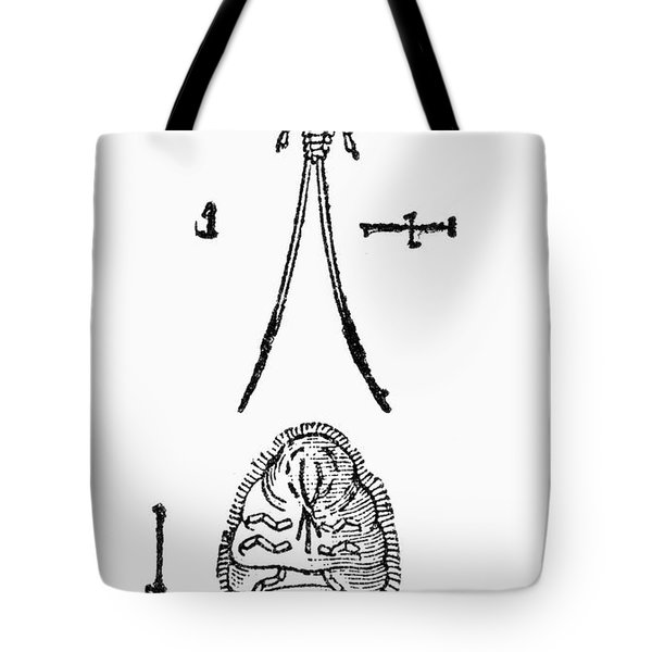 Cochineal Insect Tote Bag by Granger