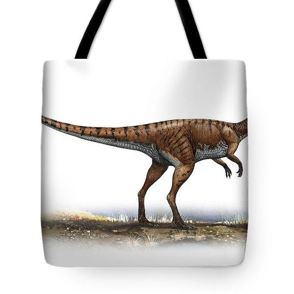 Coelophysis Bauri, A Prehistoric Era Tote Bag by Sergey Krasovskiy