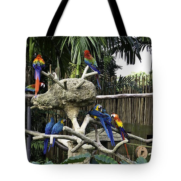 Colorful birds on a branch inside the Jurong Bird Park in Singap Tote Bag by Ashish Agarwal