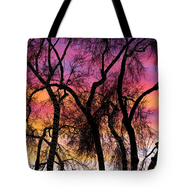 Colorful Silhouetted Trees 27 Tote Bag by James BO  Insogna