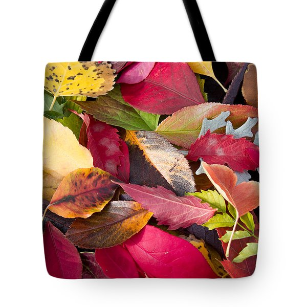 Colors Of Autumn Tote Bag by Shane Bechler