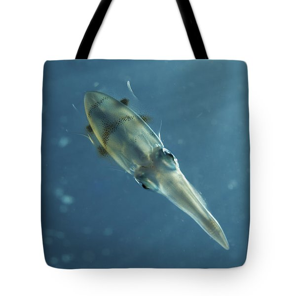 Colourful Squid, North Sulawesi Tote Bag by Mathieu Meur