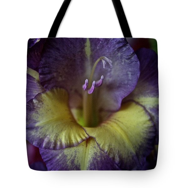 Complimentary Colors Tote Bag by Susan Herber