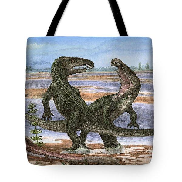 Confrontation Between Two Prehistoric Tote Bag by Sergey Krasovskiy