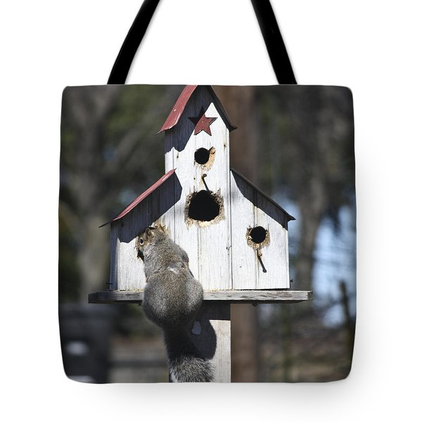 Contemplation Tote Bag by Teresa Mucha