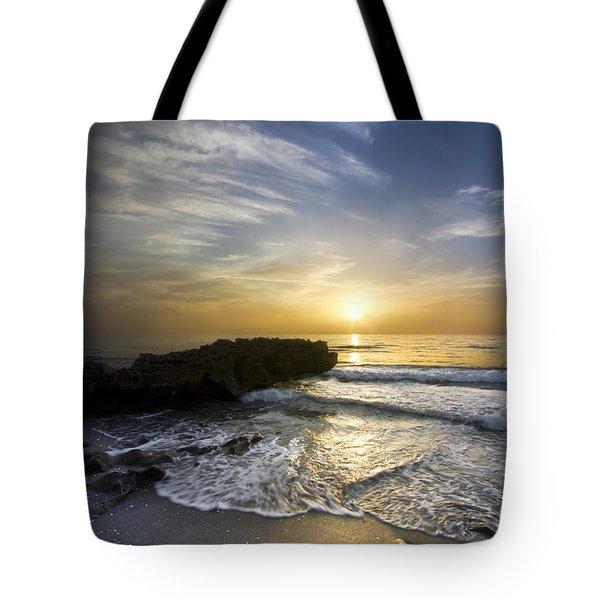 Coral Shoreline Tote Bag by Debra and Dave Vanderlaan