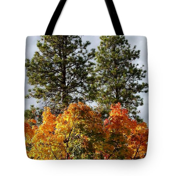 Country Color 24 Tote Bag by Will Borden