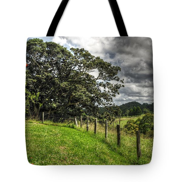 Countryside With Old Fig Tree Tote Bag by Kaye Menner