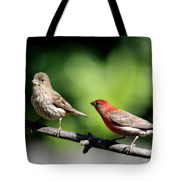 Courtship In Nature . 40D8073 Tote Bag by Wingsdomain Art and Photography