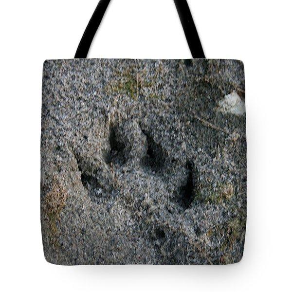 Coyote Tote Bag by Susan Herber