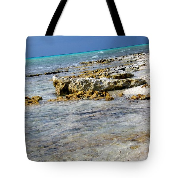 Cozumel Before Thunder Tote Bag by Danielle  Parent