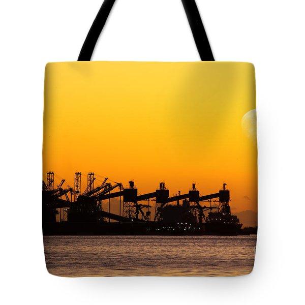 Cranes At Sunset Tote Bag by Carlos Caetano