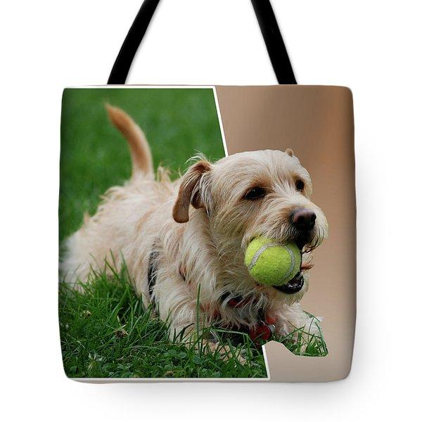 Cruz My Ball Tote Bag by Thomas Woolworth