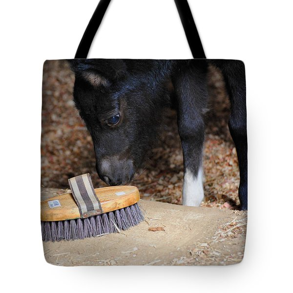 Curious Miniature Pony Tote Bag by Jai Johnson