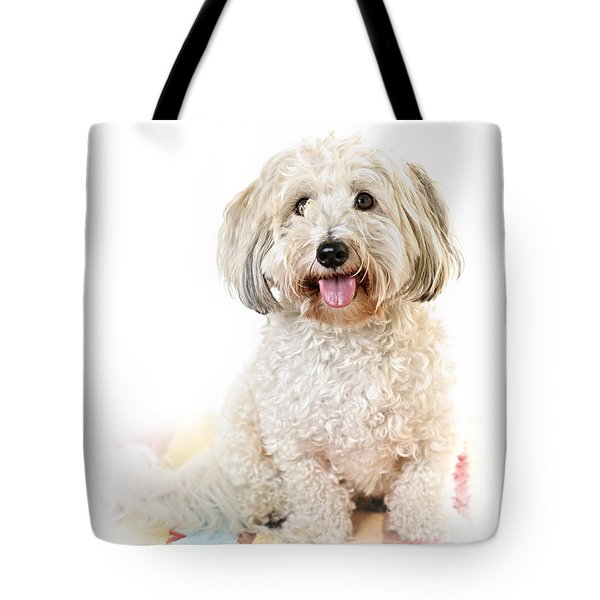 Cute Dog Portrait Tote Bag by Elena Elisseeva