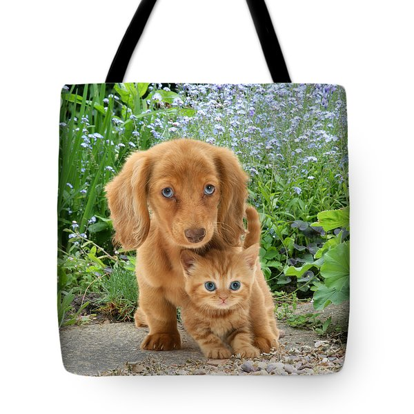 Dachshund And Tabby Tote Bag by Jane Burton