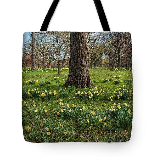 Daffodil Glade Number 2 Tote Bag by Steve Gadomski