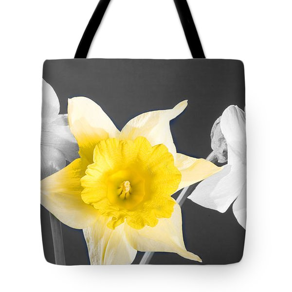 Daffodil Trio  Tote Bag by Cheryl Young