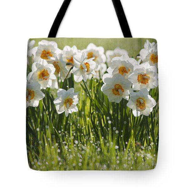 Daffodils In The Dew Covered Grass Tote Bag by Susan Dykstra