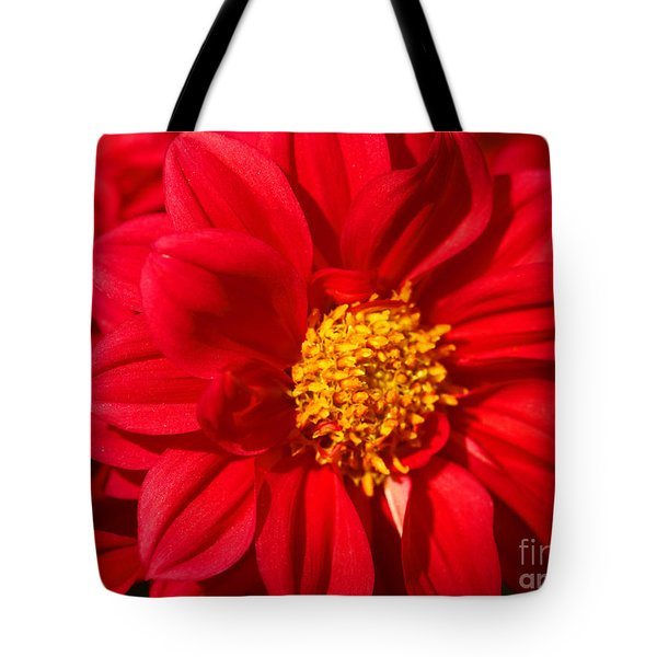Dahlia Tote Bag by Cheryl Young
