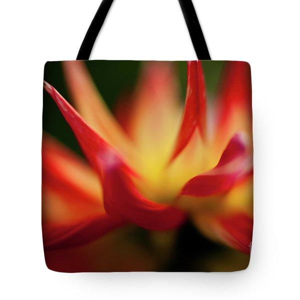 Dahlia Feuer Tote Bag by Mike Reid