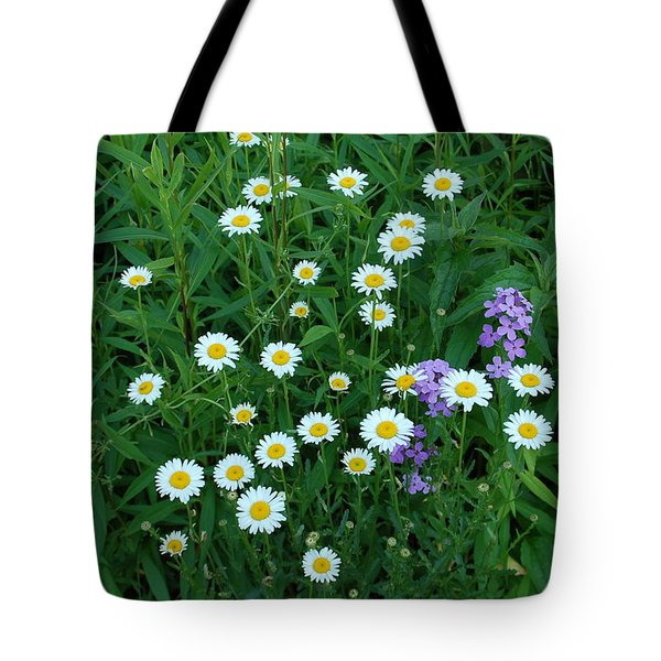 Daisies Tote Bag by Aimee L Maher Photography and Art