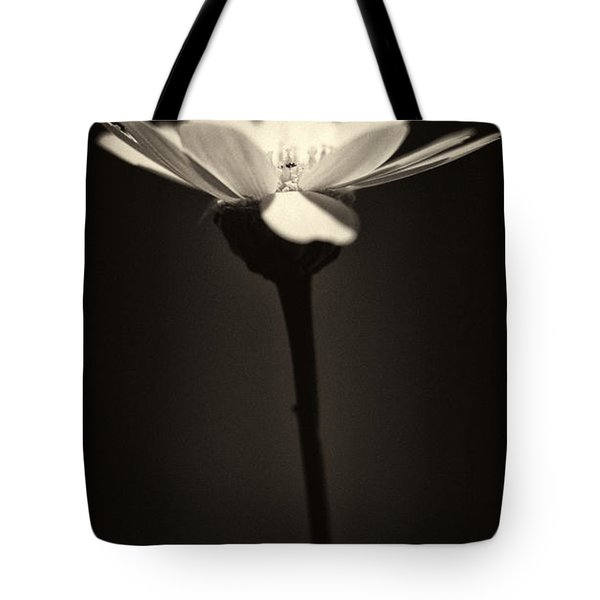 Daisy Flower Monochrome Tote Bag by Stylianos Kleanthous