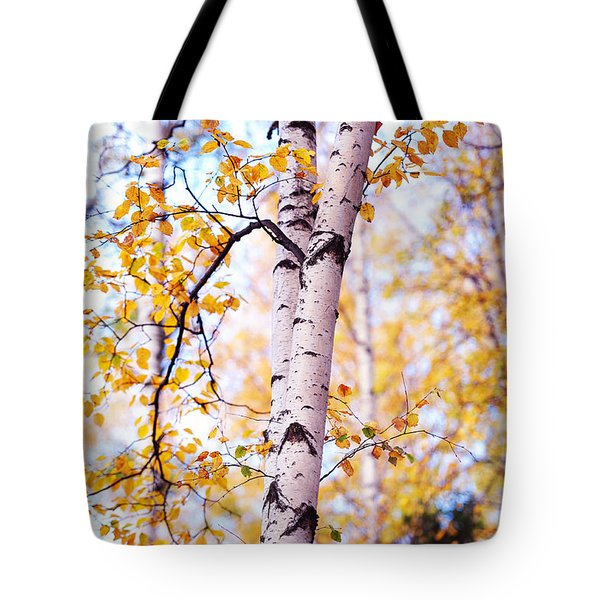 Dancing Birches Tote Bag by Jenny Rainbow